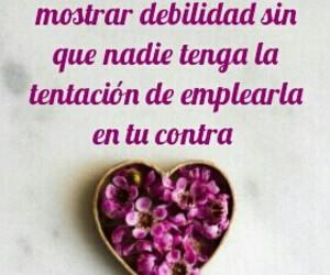 amor, debilidad, and love image