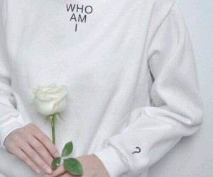 white, aesthetic, and rose image