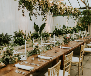 chairs, flowers, and furniture image