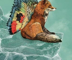 art, butterfly, and fox image
