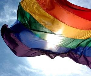gay, pride, and flag image