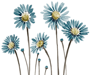 flowers, blue, and drawing image