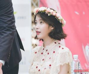 flower and iu image