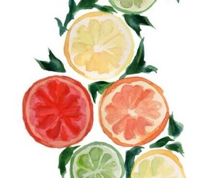 watercolour, art, and fruit image