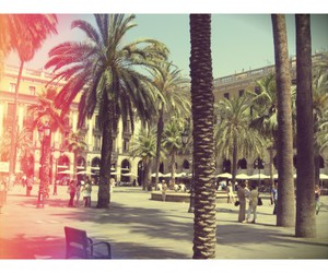 Barcelona, photography, and summer image
