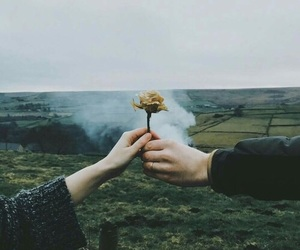 flowers, hands, and tumblr image