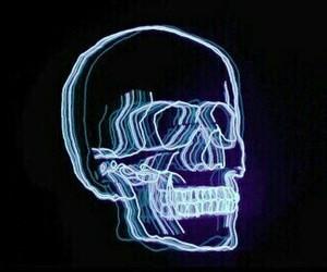 skull, light, and neon image