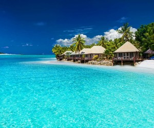 beach, paradise, and places image
