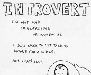 introvert, quotes, and text image