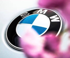 bmw, flower, and summer image