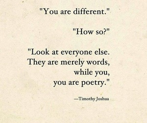 poetry, quotes, and you image