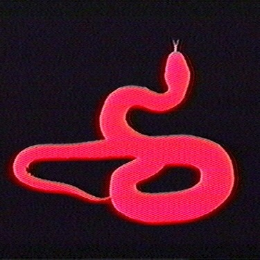 snake, aesthetic, and red image