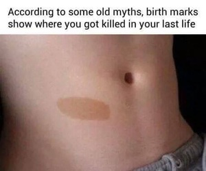 funny, memes, and facts image