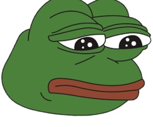 pepe, meme, and frog image