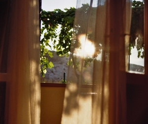 morning, room, and sunlight image