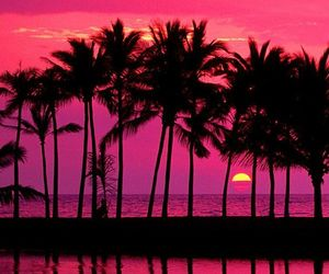 wallpaper, beach, and sunset image