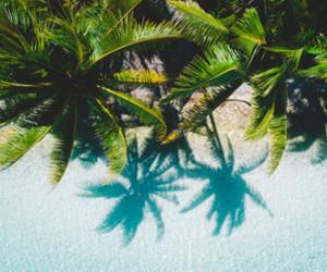 aesthetics, tahiti, and art image