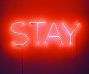 stay, neon, and orange image