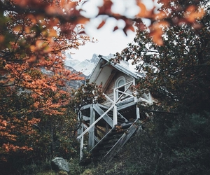 cabin, inspiration, and nature image