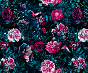 background, nature, and roses image