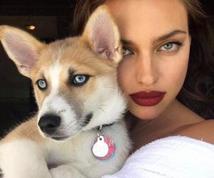 dog, irina shayk, and model image