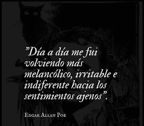 Indiferencia Edgar Allan Poe On We Heart It