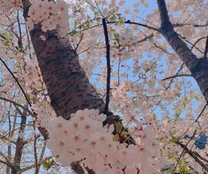 pink and namjoon image