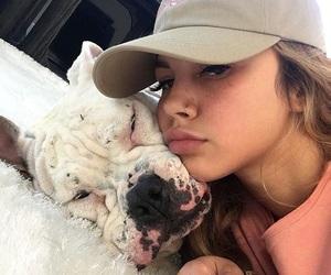 dog, arzaylea, and petunia image