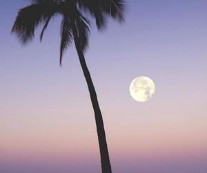 sky sunset beach image