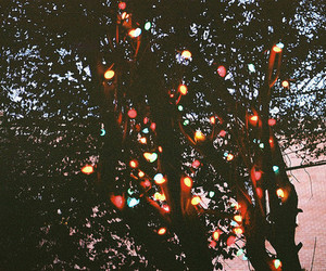 light, tree, and hipster image