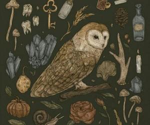 key, owl, and crystal image