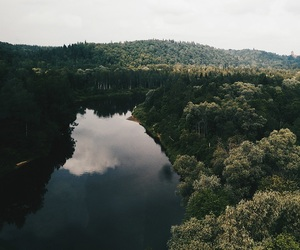 forest, lake, and photography image