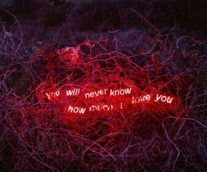 love, red, and neon image