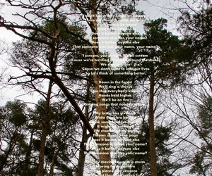 aesthetic, forest, and Lyrics image