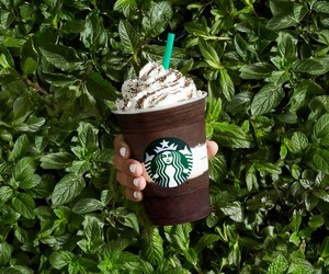 coffee, starbucks, and iced coffee image