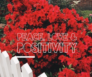 happiness, quotes, and peace image