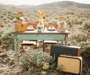nature, photography, and suitcases image