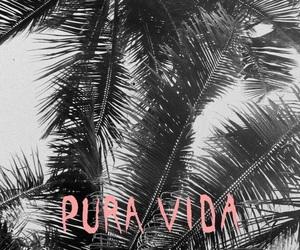 wallpaper, background, and pura vida image