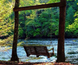 forest, summer, and swing image