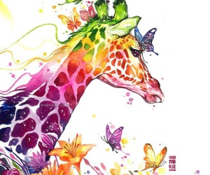 colors and giraffe image