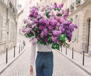 flowers, purple, and beauty image