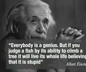 quotes, genius, and Albert Einstein image