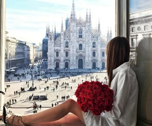 roses, city, and flowers image