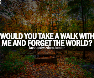 quote, text, and walk image