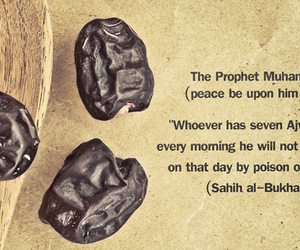 dates, prophet, and fruit image