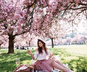 fashion and picnic image