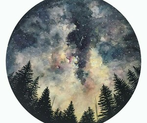 forest and stars image