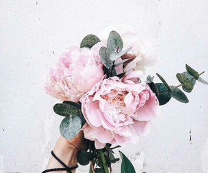 flowers, amazing, and peonies image