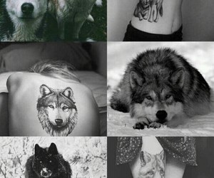 black and withe, siberian husky, and tattooed girl image