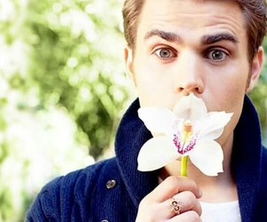 paul wesley, the vampire diaries, and flowers image